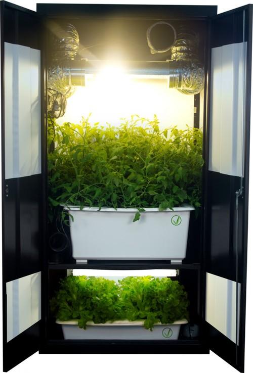 Grow tent box