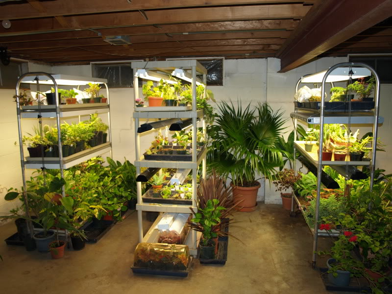 tips to set up an affordable indoor grow space. Black Bedroom Furniture Sets. Home Design Ideas